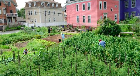 Community Land Trust in Providence, Estados Unidos. Foto Kendall Foundation[